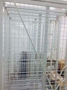 Ramovi za kačenje slika za Muzej Primenjene Umetnosti u Beogradu