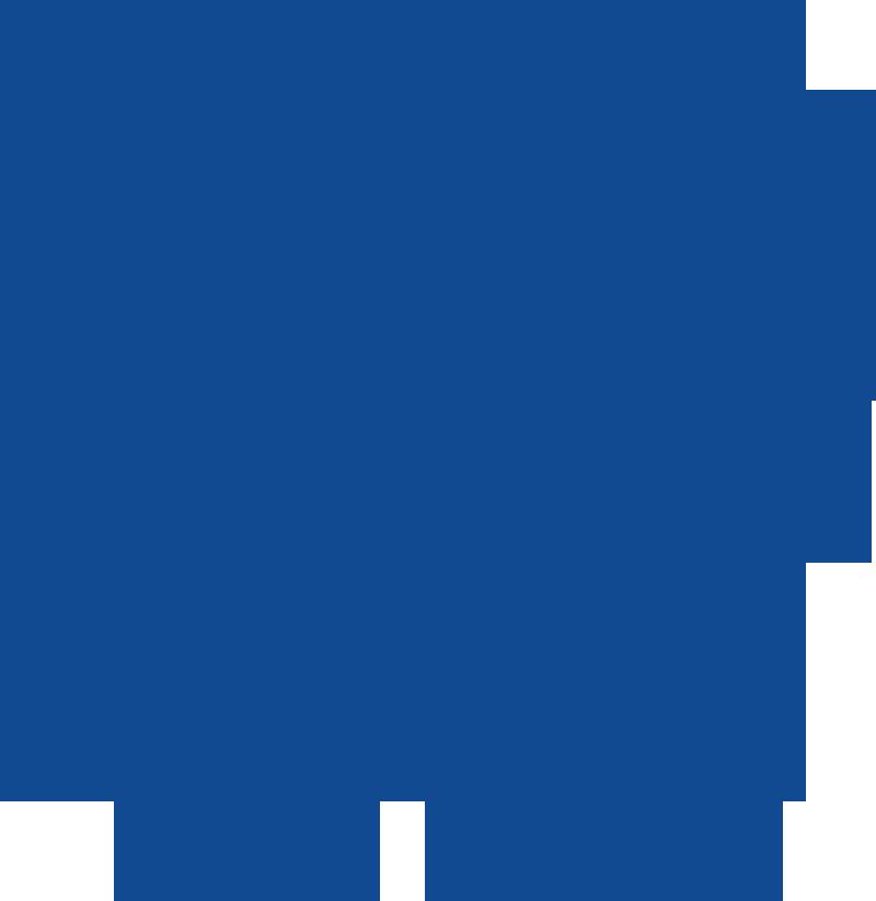 iom-fi