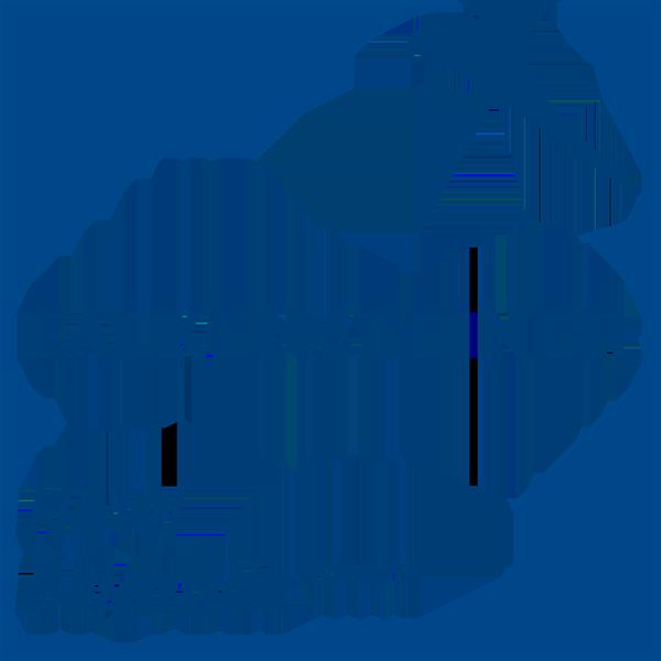 falkensteiner-hotel-fi